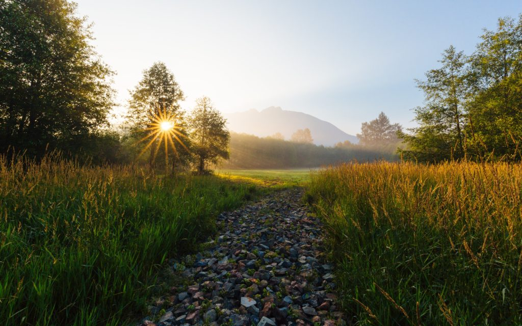 Serene sunset with a rocky but clear path, trees and mountains in view